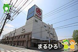 まるひろ(15...