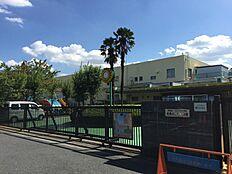 幼稚園武蔵みどり幼稚園まで279m