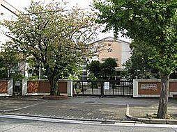 大新小学校