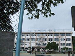 金剛沢小学校