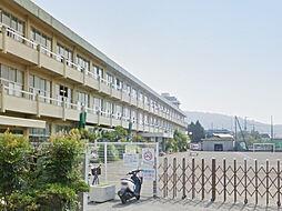 千代小学校
