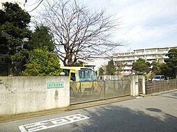 富士見幼稚園 ...