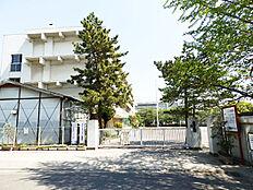 大門中学校 約1403m
