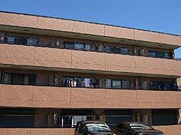 サンフレイム[1階]の外観
