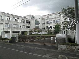 中主小学校