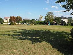 東郷公園 北側...