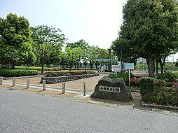 新郷西沼公園 ...