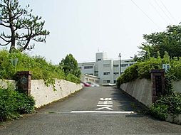 松原中学校