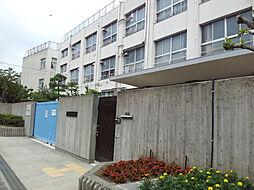 清水丘小学校(...