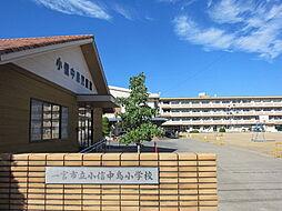 小信中島小学校