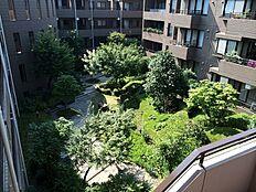 閑静で緑豊かな住宅街、広い敷地内には多数の木々や緑が植裁された中庭がございます。
