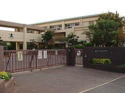 芝谷中学校