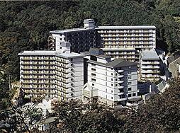 伊豆市修善寺