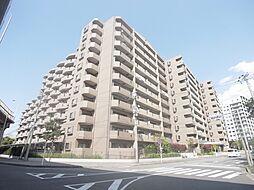 日神パレステージ海浜幕張 11階 新規リフォーム済