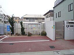 入新井保育園:...