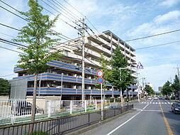 サンクレイドル五井弐番館