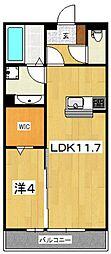 LSY45[303号室号室]の間取り