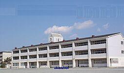 湘洋中学校