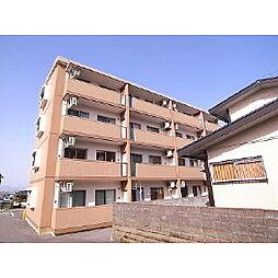 福岡県久留米市山川町の賃貸マンションの外観