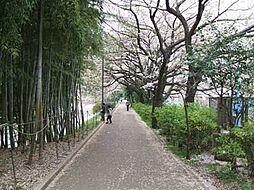 江古田の森公園