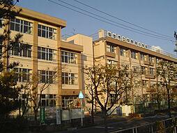 中野栄小学校ま...