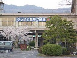 皇子山中学校/...