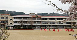 学区 久慈中学...