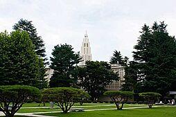大学東京女子大...
