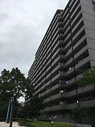 ワコーレRG北本