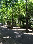 敷地内緑地。都会にいながら自然を感じることのできる環境です。