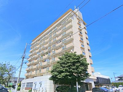 外観,2LDK,面積59.83m2,賃料6.0万円,JR常磐線 水戸駅 3.6km,,茨城県水戸市上水戸