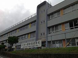 玄海東小学校