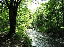 一級河川の湯川...