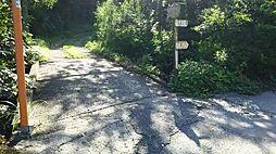 現地への道。