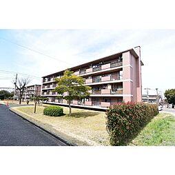 鍋屋上野住宅2号棟[3階]の外観