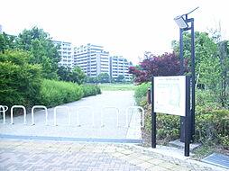 桃井原っぱ公園...