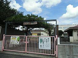 桜木 文化幼稚...