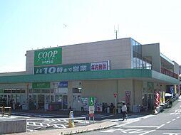 コープ西多賀店...