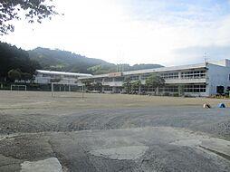 箟岳白山小学校...