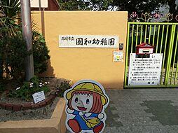 幼稚園園和幼稚...