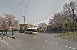 大学埼玉医科大...