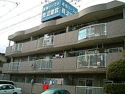 愛知県名古屋市西区円明町の賃貸マンションの外観