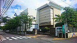 中川中学校270M、木根川小学校400Mと養育施設も5分圏内