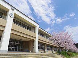 学区:利根中学...