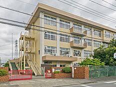 八王子市立椚田小学校 距離1100m