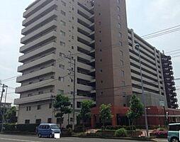 秀和平塚レジデンス 8階