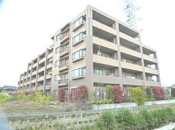 レクセルマンション東村山 〜東南角部屋・4LDK〜
