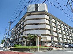 鵠沼スカイマンション 3階