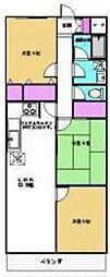 メゾンホークロード[3階]の間取り