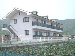 コーポ古川[103号室]の外観